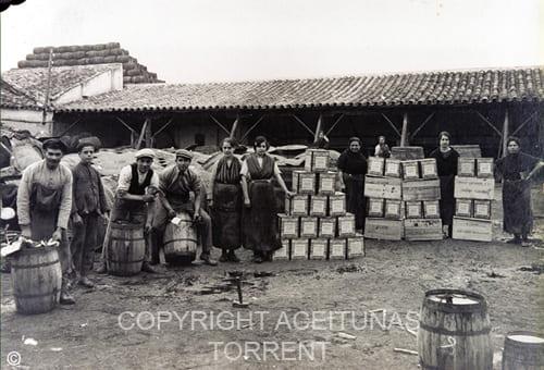 Aceitunas Torrent en Sudamérica