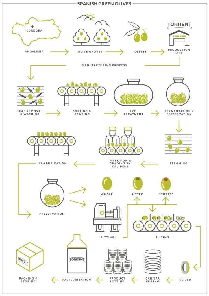 Production Green Olives