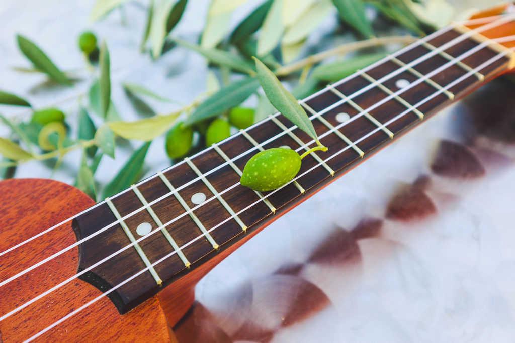 música y aceitunas Torrent 
