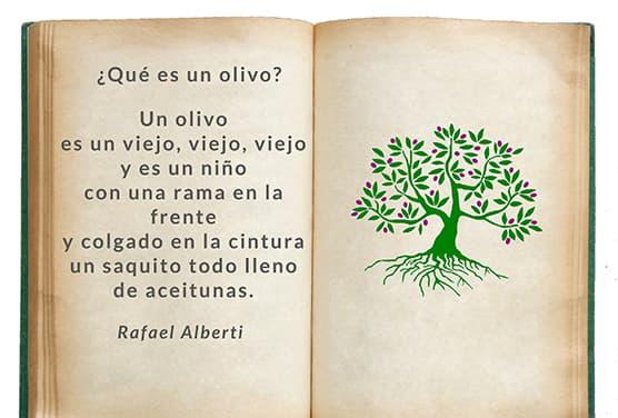 Alberti||||||||||Alberti