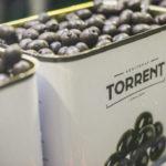 Kosher Olives|