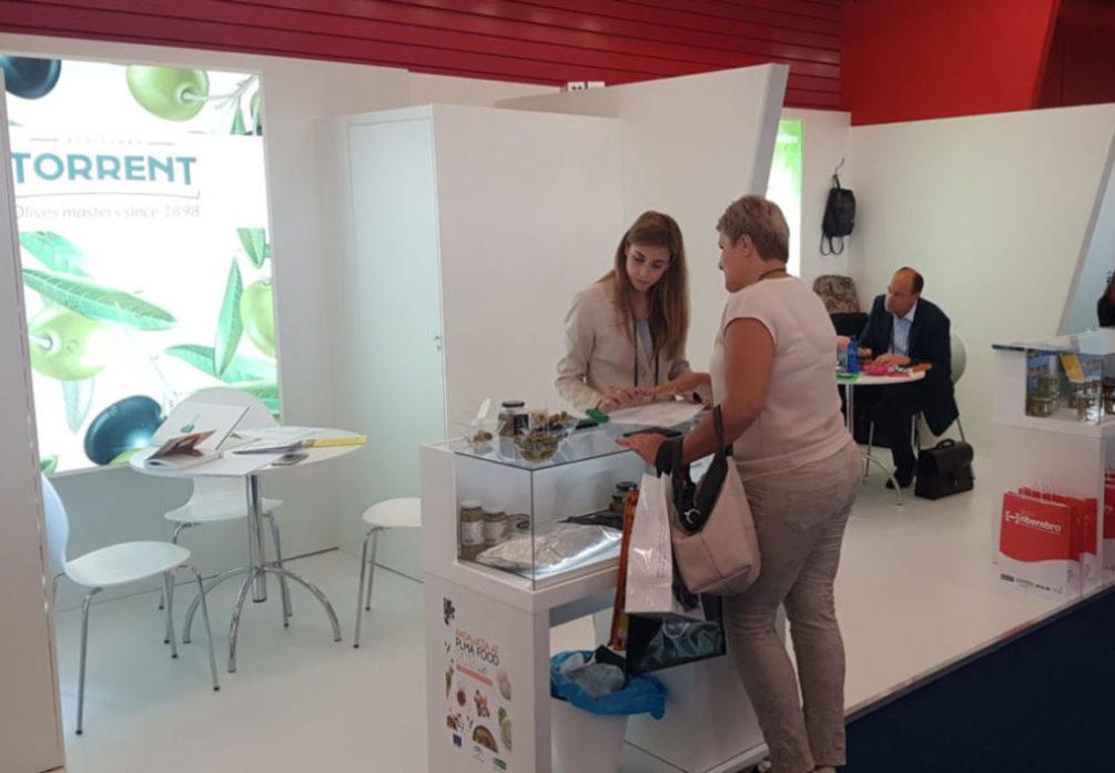 PLMA-Torrent-Olives|PLMA Aceitunas Torrent|PLMA-Olives-Torrent-European distributors
